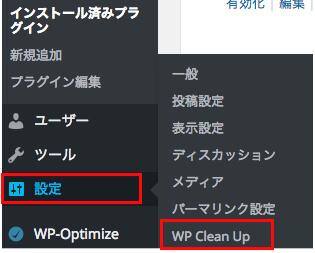 wp-clean03